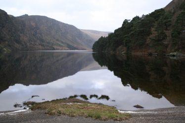 Woodland at Glendalough Upper Lake | Dick Coombes