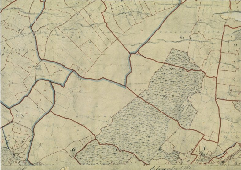 The Placenames of County Wicklow - origins and meanings