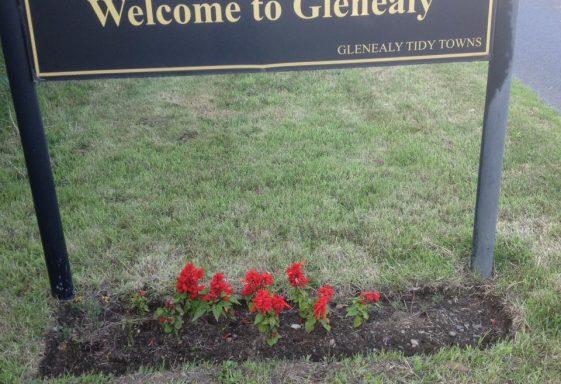 Glenealy PURE Mile 2014