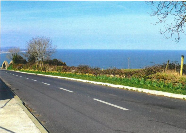 Potential of Greenhill Road after daffodils planted | Ballyguile More Group