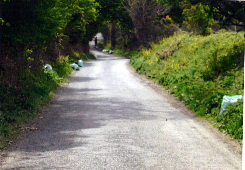 More rubbish awaiting skip | Ballyguile More Group
