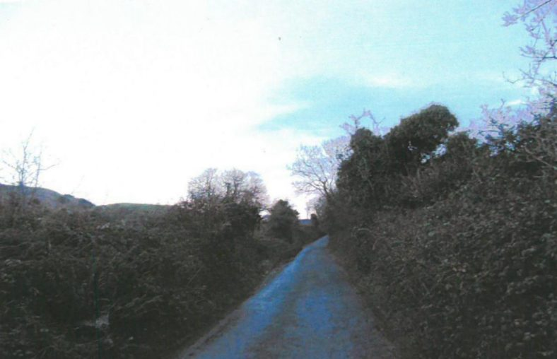 Narrow roadway before hedges were cut | Ballyguile More Group