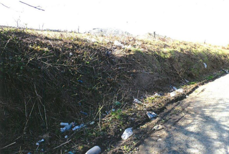Hedges cut exposing extensive illegal dumping | Ballyguile More Group