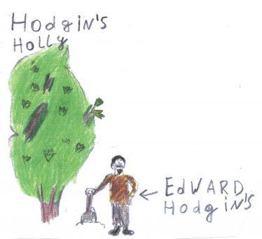 Hodgins   By The Pupils Of Brittas Bay School 2014