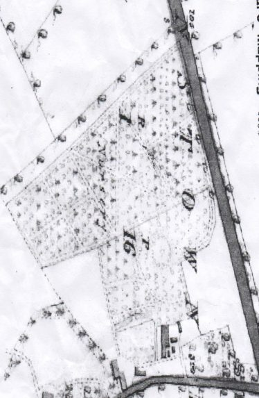 Messrs Hodgins Nurseries  ( 16 acers ) 1838 OS map   OS 1838
