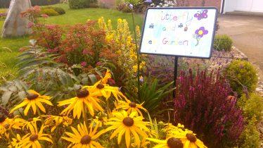 Butterfly & Bee Garden at Ballycoog N.S | D. Burns