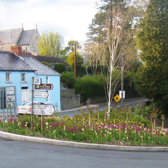 Rose beds on the turn | Rathdrum Tidy Towns