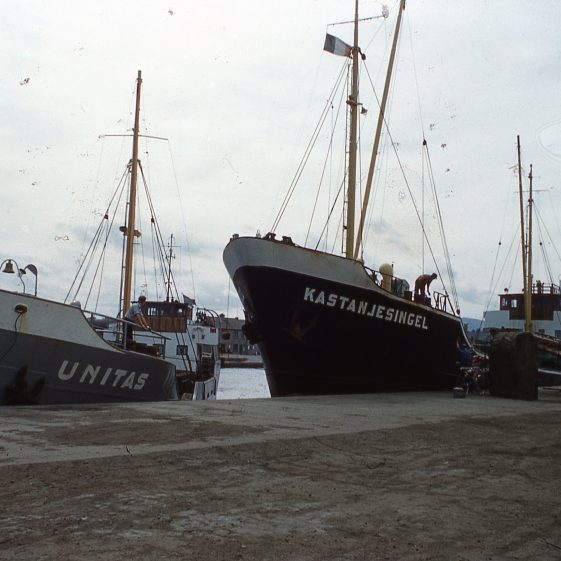 Ships ready to collect copper ore for processing