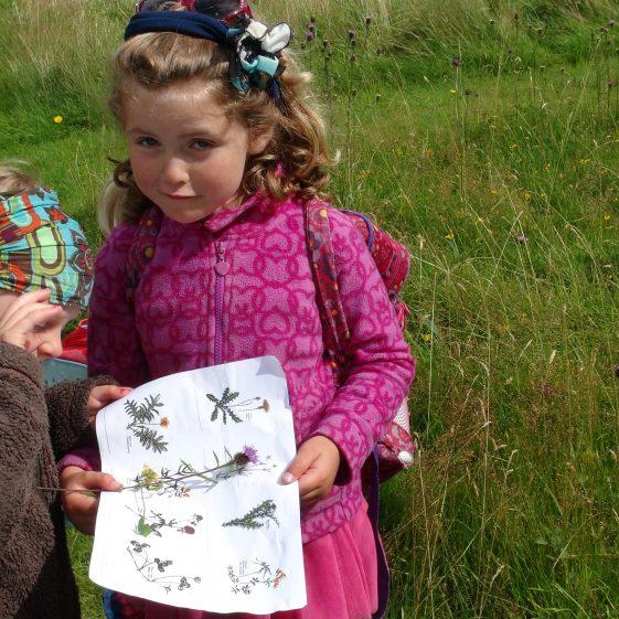 Junior Botanists at Kilmacurragh Wildflower meadow | Deirdre Burns