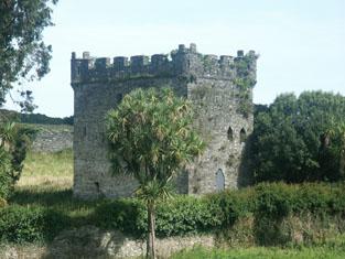 Kiltimon Castle - 1540-60 | www.buildingsofireland.ie
