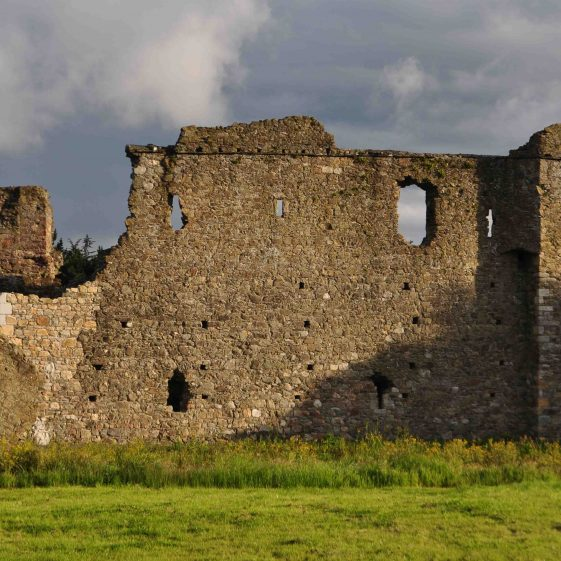 Kindlestown Castle, near Delgany   Christiaan Corlett