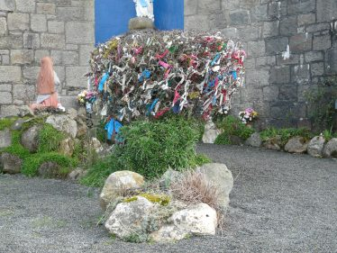 Maybush in Our Lady's Grotto | Mary Hargaden