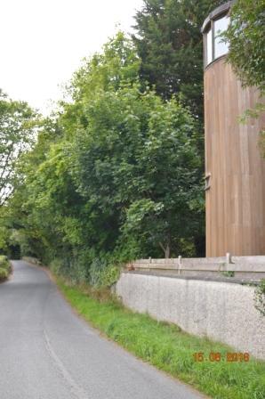 Milltown Bridge | Tommy Kearney