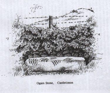 Castletimon Discoveries