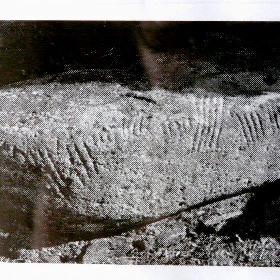 Old Photograph of Ogham Stone | Castletimon National School