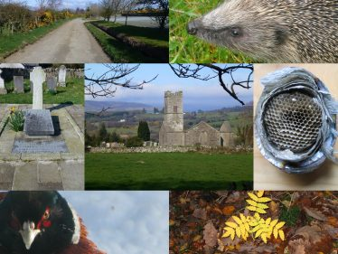 Oldtown Collage   Roundwood and District Community Council