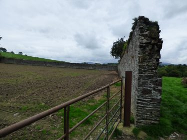 Remains of Calico/Cotton Mill at Stratford-on-Slaney   Mary Hargaden September 2015