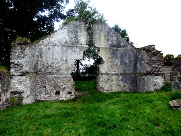 Remains of gable wall at Mill Buildings Stratford-on-Slaney   Mary Hargaden September 2015