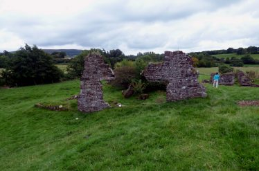 Remains of Mill Buildings at Stratford-on-Slaney   Mary Hargaden September 2015
