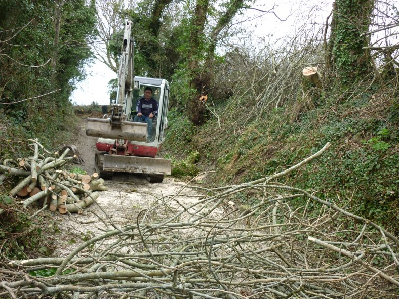 Project Underway | Aughrim Tidy Towns Limited