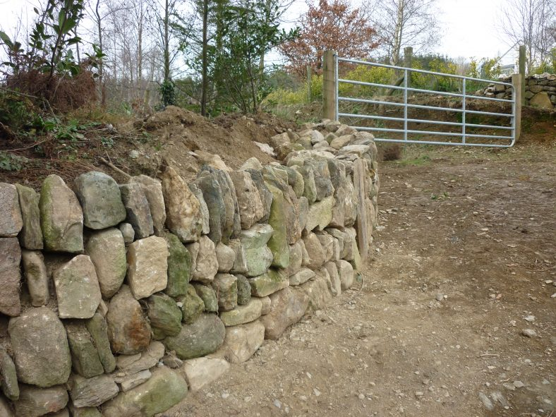 Bank and Wall Firmly in Place | Aughrim Tidy Towns Limited