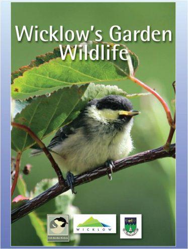 Wildlife in Wicklow's Gardens