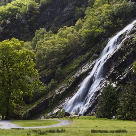 Powerscourt Waterfall   Brendan Cullen