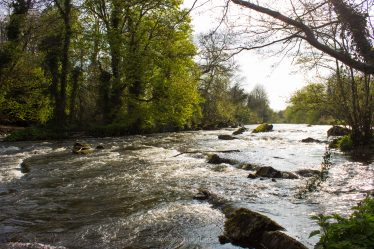 River Liffey | Abarta Heritage