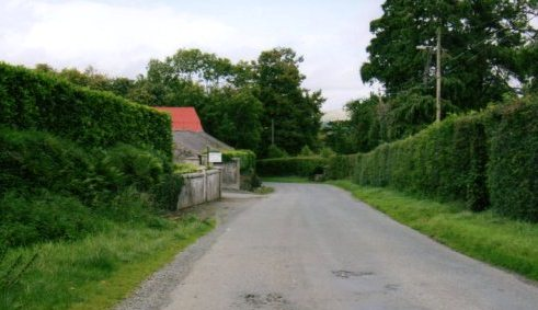 Road past Corballis House | Rathdrum Tidy Towns