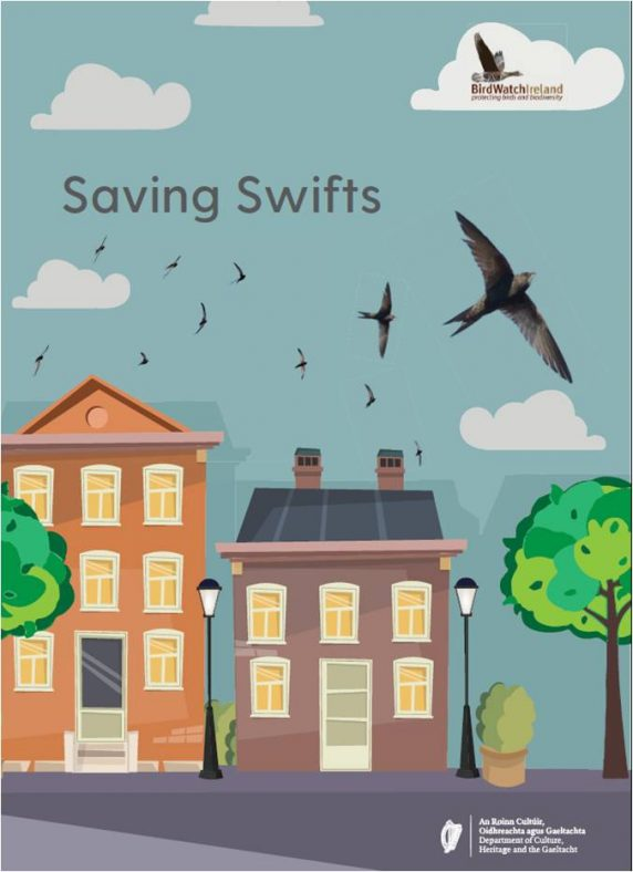 Saving Swifts Guide   BirdwatchIreland & Local Authority Heritage Officer Network