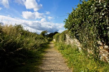 Well travelled Path   PURE Mile