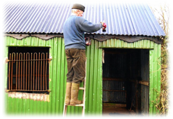 Repainting and restoring shop/storehouse   Wicklow Way Group