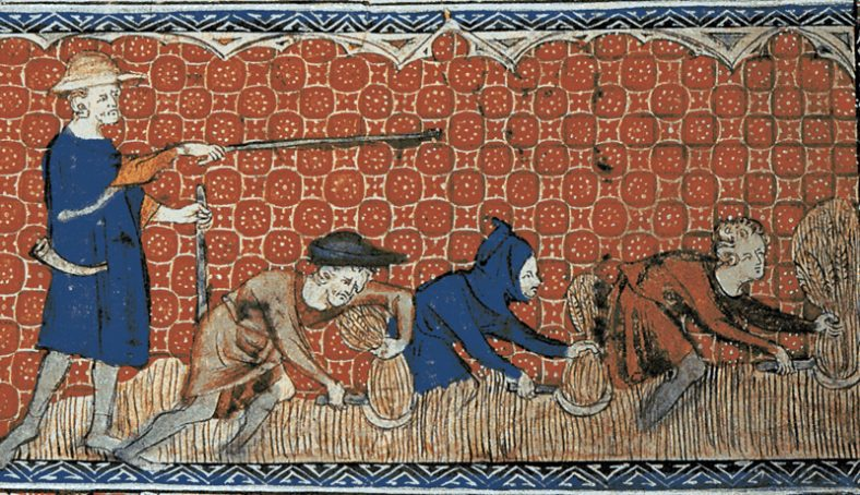 Men harvesting wheat with reaping-hooks c. 1310 AD | August calender page. Queen Mary's Psalter (ms. Royal 2.B.Vll) fol. 78v (l) c 1310 AD