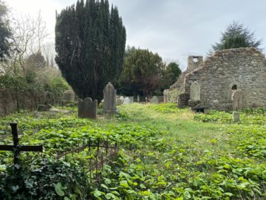 After Clearance view of Medieval Church and Gravestones at Old Conna | The Medieval Bray Project