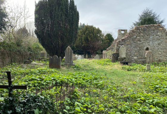 Old Conna (Connaught) Church and Graveyard