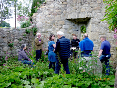 Old Conna/Connaught Graveyard Volunteers and interested parties listening to short history of the graveyard given by David McIlreavy.  | The Medieval Bray Project