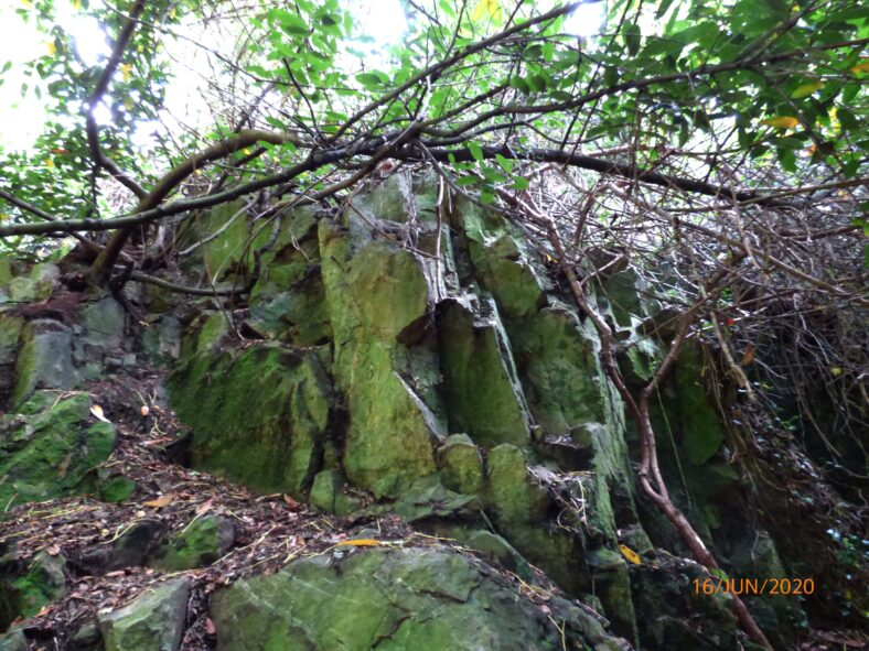 Outcrop at area in front of Loretto Convent (previously a grotto) | The Medieval Bray Project