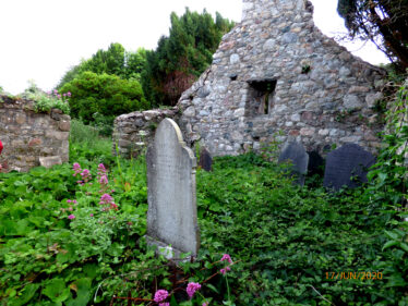 Overgrowth inside the church. | The Medieval Bray Project