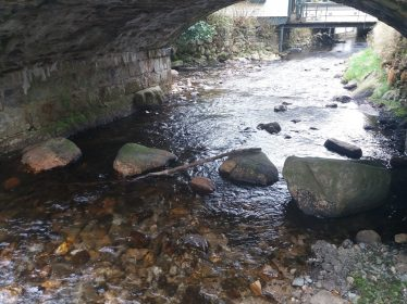 Stepping Stones under South Arch - looking East | P. Reid