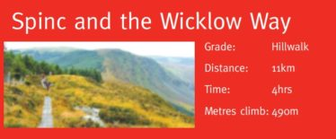 Spinc and the Wicklow Way | Courtesy of the NPWS