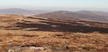 Blanket Bog | Courtesy of the NPWS